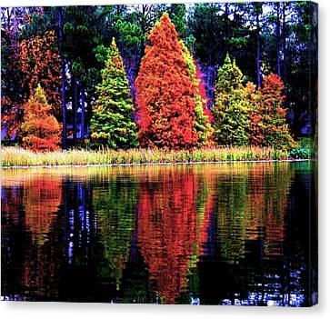Reflections Canvas Print by Carrie OBrien Sibley
