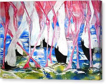 Rift Valley Flamingo Feeding Canvas Print