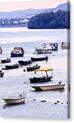 River Boats On Danube Canvas Print by Elena Elisseeva