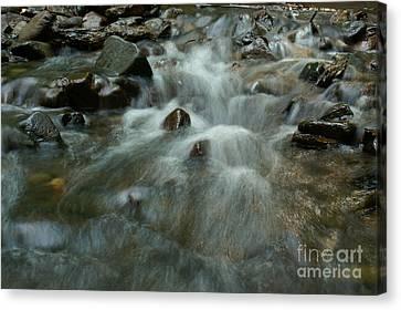 River Canvas Print by Odon Czintos