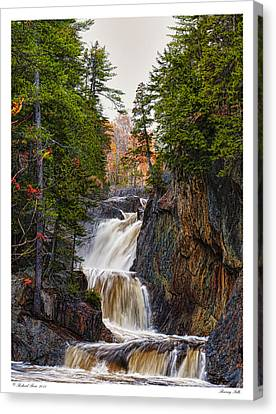 Canvas Print featuring the photograph Roaring Falls by Richard Bean