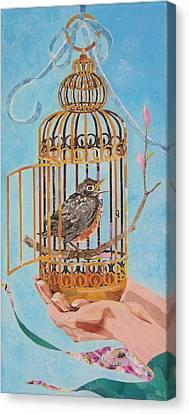 Robin Bird Canvas Print by Robin Birrell