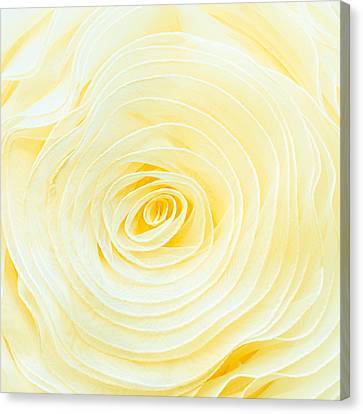 Rolled Fabric Canvas Print by Tom Gowanlock