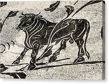Roman Mosaic, Ostia Antica Canvas Print by Sheila Terry
