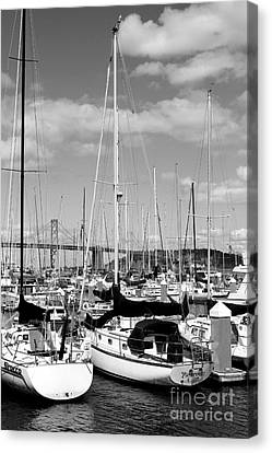 Sail Boats At San Francisco China Basin Pier 42 With The Bay Bridge In The Background . 7d7685 Canvas Print by Wingsdomain Art and Photography