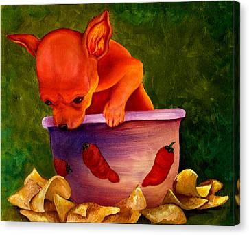 Salsa Chihuahua Canvas Print by Gail Mcfarland