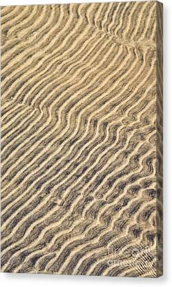 Sand Ripples In Shallow Water Canvas Print