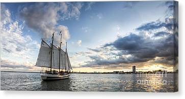 Schooner Pride Sunset Charleston Sc Canvas Print by Dustin K Ryan