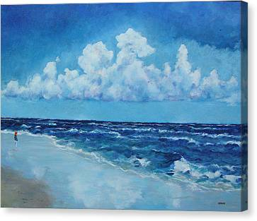 Sea And Sky Canvas Print by Robert Henne