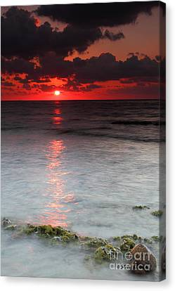 Sea Scape Sunrise Canvas Print