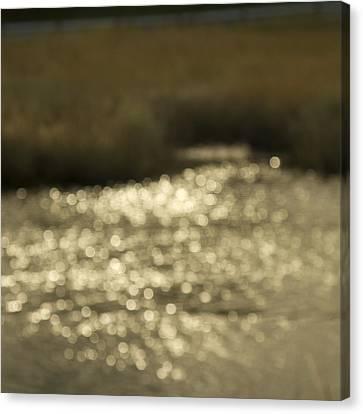 Seurat Sunshine Canvas Print by Bob Retnauer