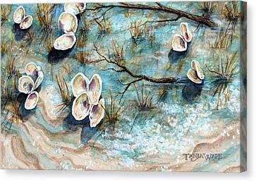 Shell Shadows Canvas Print by Tanja Ware