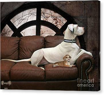Shelter Dogs Canvas Print by Terry Burgess