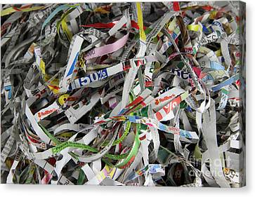 Shredded Paper Canvas Print by Photo Researchers, Inc.