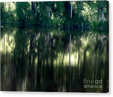 Silence Canvas Print by Pauli Hyvonen