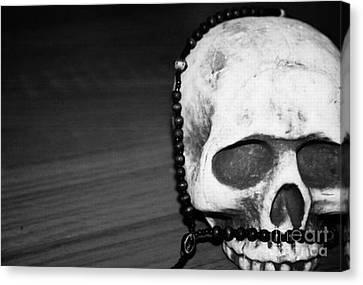 Skull 1 Canvas Print