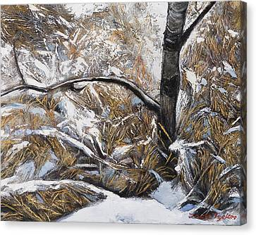 Snow Grass Canvas Print by Jack Tzekov
