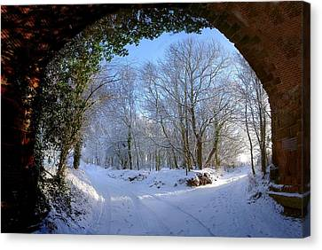 Snow Through The Bridge Canvas Print