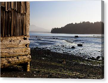 Sointula With The Mountains Canvas Print by Taylor S. Kennedy