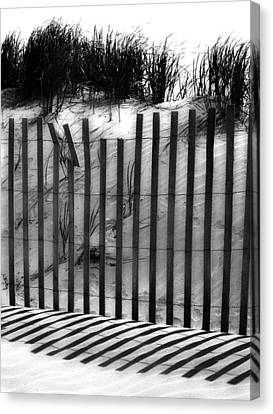 Soliciting The Sand Canvas Print by Empty Wall