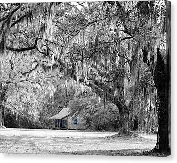 Southern Shade Selective Color Canvas Print by Al Powell Photography USA