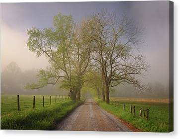 Sparks Lane Canvas Print by Joseph Rossbach