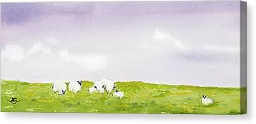 Spring In Ireland Canvas Print