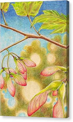 Springtime  Canvas Print by Robin Birrell
