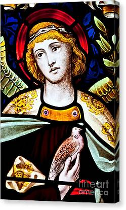 Stained Glass Angel Canvas Print