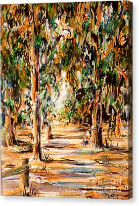 Stanford Eucalyptus Grove Canvas Print
