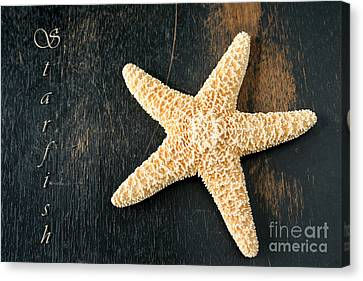 Starfish Canvas Print by Darren Fisher
