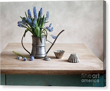 Copyspace Canvas Print - Still Life With Grape Hyacinths by Nailia Schwarz