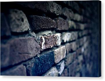 Stone Wall Canvas Print by Joana Kruse