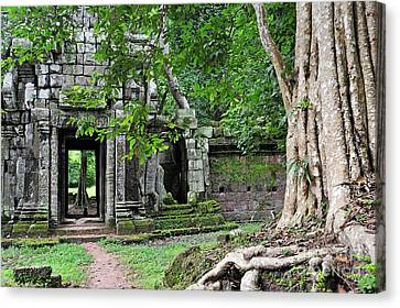 Strangler Fig Tree Roots On Ruins Canvas Print