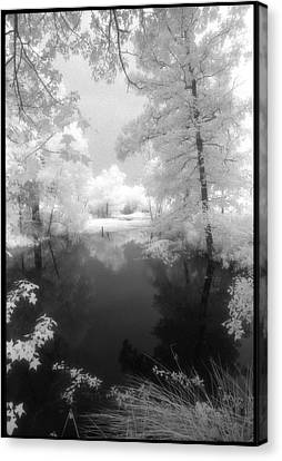 Summer At The Pond Canvas Print by Greg Kopriva
