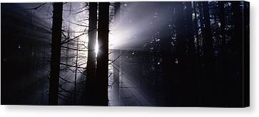Sun Breaking Through Mists Canvas Print by Ulrich Kunst And Bettina Scheidulin