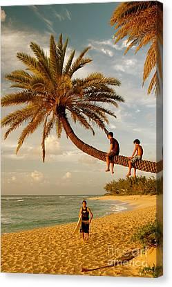 Sunset Beach Oahu Canvas Print by Mark Gilman