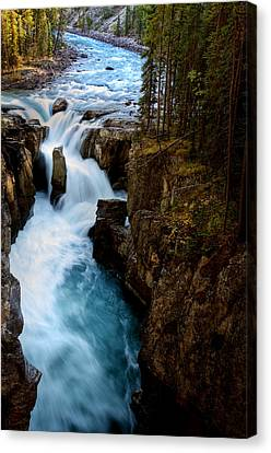 Sunwapta Falls In Jasper National Park Canvas Print by Mark Duffy