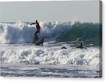 Surfers At Porthtowan Cornwall Canvas Print by Brian Roscorla
