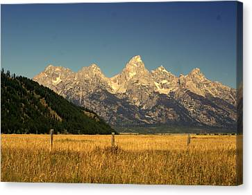 Canvas Print featuring the photograph Tetons 3 by Marty Koch