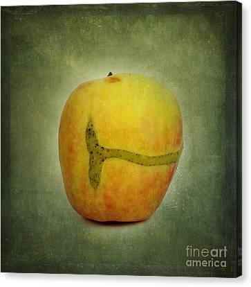 Textured Apple Canvas Print by Bernard Jaubert