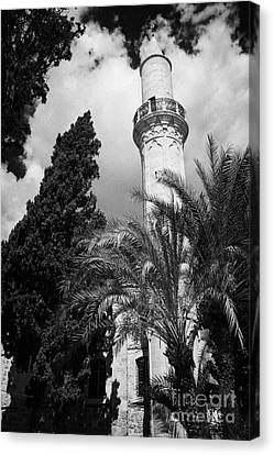 Larnaca Canvas Print - The 16th Century Grand Mosque Or Djami Kebir In Larnaca Republic Of Cyprus by Joe Fox
