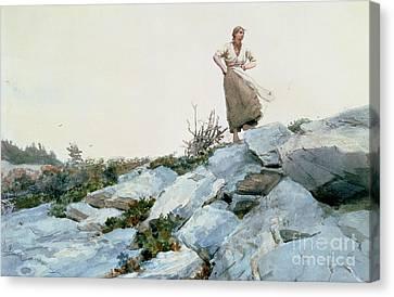Windswept Canvas Print - The Faggot Gatherer by Winslow Homer