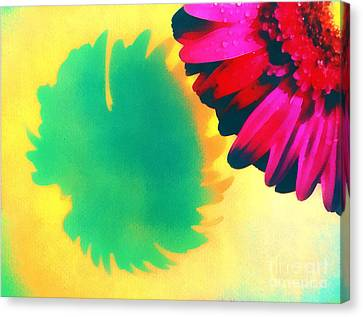 The Gerbera Canvas Print by Odon Czintos