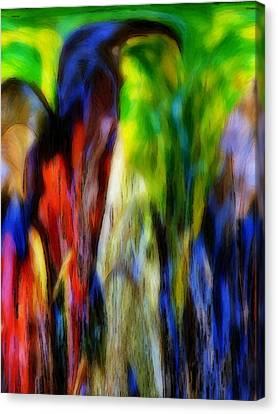 The Parrot Canvas Print by Steve K
