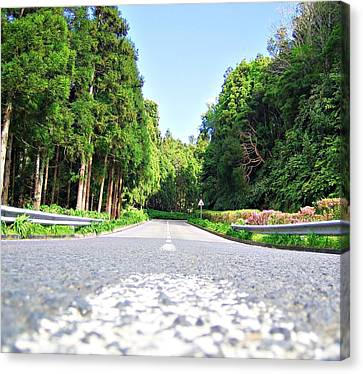 Canvas Print - The Road by Jenny Senra Pampin