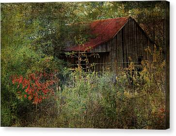 The Shed Canvas Print by Dianna Hauf