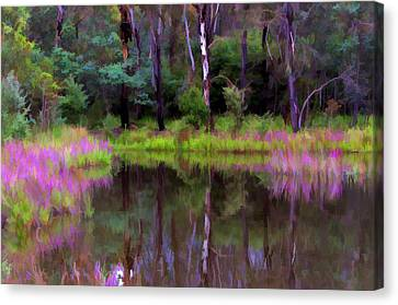 Tidbinbilla Reflections Canvas Print by Paul Svensen