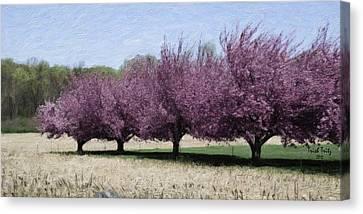 Trees On Warwick Canvas Print by Trish Tritz