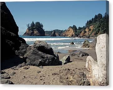Trinidad Beach Canvas Print by Sharon Elliott